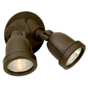 Two Light Halogen Flood Lamp