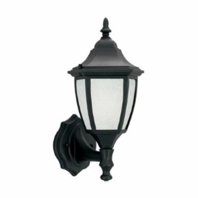 Designers Fountain ES2462-GL-BK One Light Wall Lantern