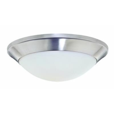 Dolan Lighting 5401-09 Rainier - One Light Flush Mount