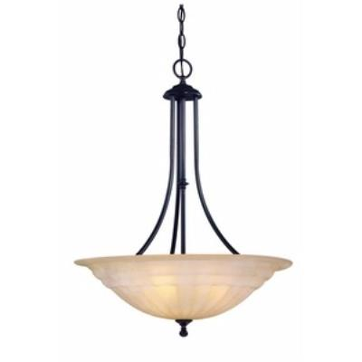 Dolan Lighting 669-78 Richland - Three Light Pendant