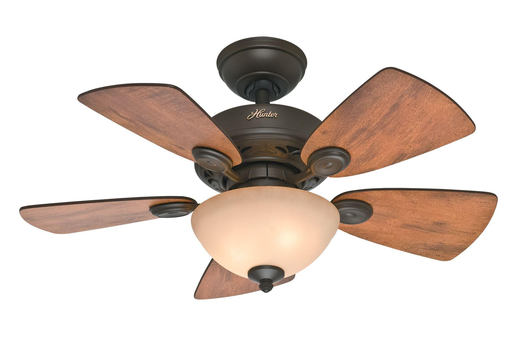 Hunter ceiling fans mozeypictures Images