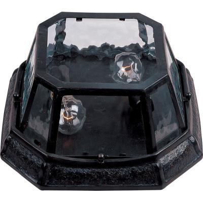 Maxim Lighting 40269WGOB Garden VX - Two Light Outdoor Flush Mount