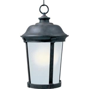 Dover EE - One Light Outdoor Hanging Lantern