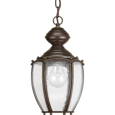 Progress Lighting P5565-20 Roman Coach - One Light Hanging Lantern