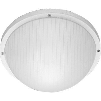 Progress Lighting P5702-30 One Light Outdoor Wall/Flush Mount