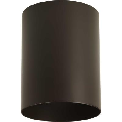 Progress Lighting P5774-20 Cylinder - One light flush mount