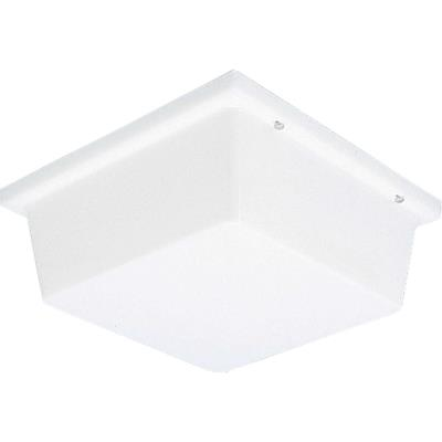 Progress Lighting P5791-60 Hard-Nox - Two Light Outdoor Wall/Flush Mount