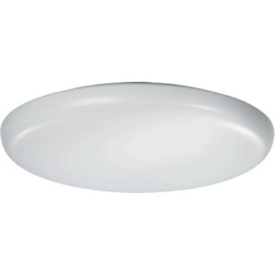 Quorum Lighting 88419-2-6 Two Light Flush Mount