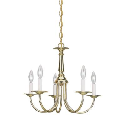 Sea Gull Lighting 3916-02 Five Light Chandelier