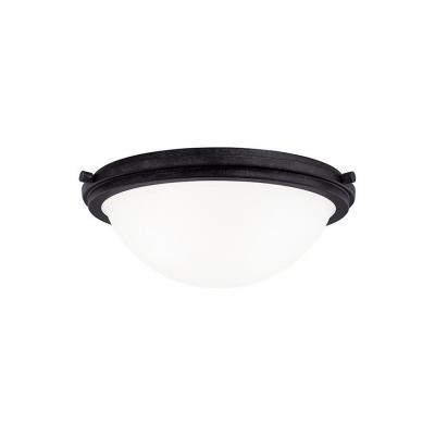 Sea Gull Lighting 75661BLE-839 Winnetka - Two Light Flush Mount