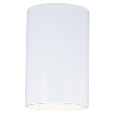 Sea Gull Lighting 8439-15 One Light Outdor Ceiling Fixture