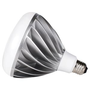 Accessory - Replacement Bulb
