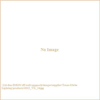Trans Globe Lighting 4043 The Standard - Two Light Pole - Down Lantern