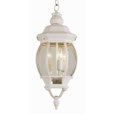 Trans Globe Lighting 4066 Classic - Three Light Medium Hanging Lantern