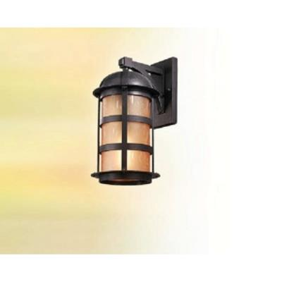 Troy Lighting BF9253 Aspen - One Light Outdoor Large Wall Lantern