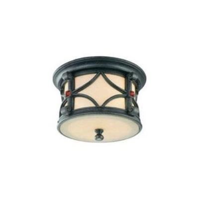 Troy Lighting CF2070ANB Woodridge - Two Light Outdoor Large Flush Mount