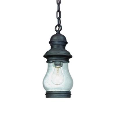 Troy Lighting F1887 Hyannis Port - One Light Outdoor Small Hanging Lantern