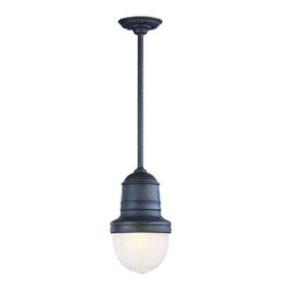 Troy Lighting F2278IB Beaumont - One Light Outdoor Medium Pendant