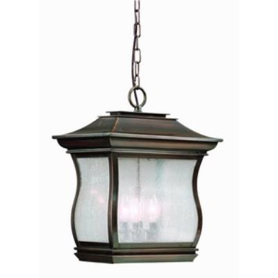 Troy Lighting F9517 Brentwood Park - Four Light Outdoor Large Hanging Lantern