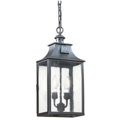 Troy Lighting FCD9004 Newton - Two Light Outdoor Medium Hanging Lantern