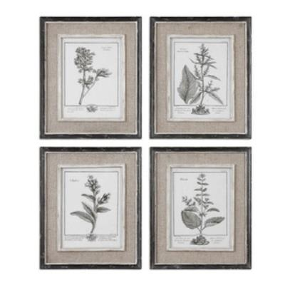 "Uttermost 32510 Casual Grey Study - 17.5"" Floral Wall Art (Set of 4)"