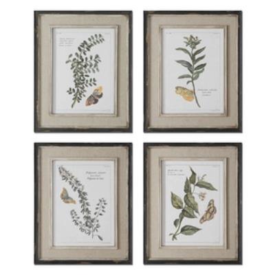 "Uttermost 51079 Butterfly Plants - 21"" Decorative Wall Art - (Set of 4)"