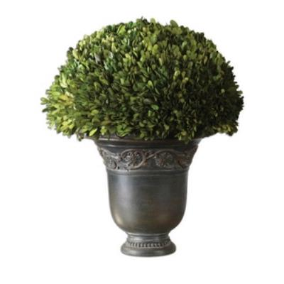 Uttermost 60092 Preserved Boxwood Globe - Planter