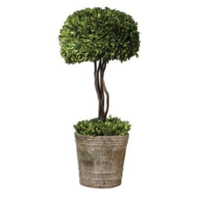 Uttermost 60095 Preserved Boxwood Triple Topiary - Planter