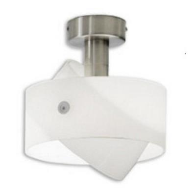 Zaneen Lighting D8-2081 Semi-Flush Ceiling Mount