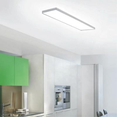 Zaneen Lighting D9-2072 Linea - Two Light Flush Mount