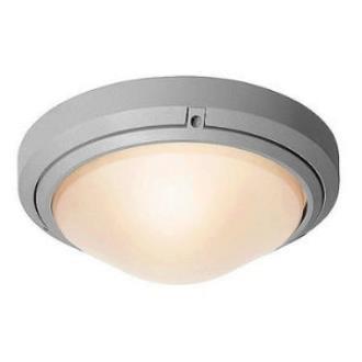 Access Lighting 20355 Oceanus Wet Location Ceiling or Wall Fixture