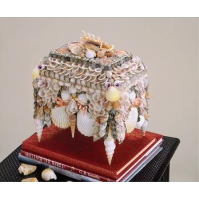 Currey and Company 1251 Boardwalk Shell Jewelry Box