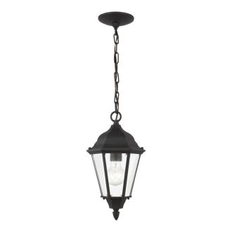 Sea Gull Lighting 60938-12 Bakersville - One Light Outdoor Pendant