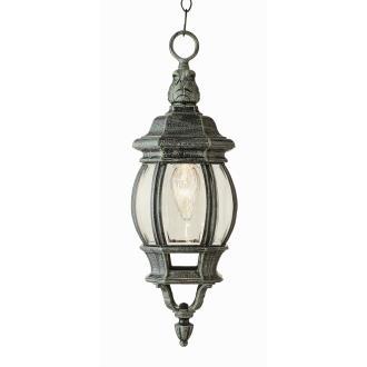 Trans Globe Lighting 4065 Classic - One Light Small Hanging Lantern