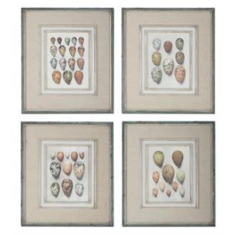 "Uttermost 51082 Study of Eggs - 26"" Decorative Wall Art - (Set of 4)"